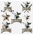 set of skull bandit sports labels vector image