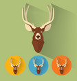 deer portrait with flat design vector image