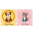 dog shop signs with cat and dog vector image