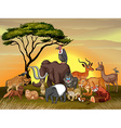 Wild animals in the savanna field vector image vector image