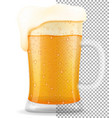 beer in mug transparent stock vector image