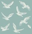 seamless hand drawn pattern with seagulls vector image