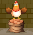 A hen above the eggs vector image vector image