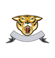 Tiger Head Growl Head Isolated vector image vector image