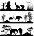 wild animals ring-tailed lemur elephant ostrich vector image