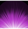 Star burst porple and white flare EPS 8 vector image vector image