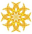 mandala sign vector image