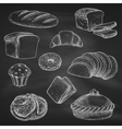 Bread chalk sketch icons on blackboard vector image vector image