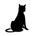 A cat is sitting vector image vector image