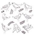 Cute handdrawn birds vector image