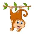 Cute monkey cartoon hanging vector image