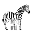 Black and white zebra concept drawing vector image
