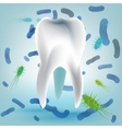 Tooth Hygiene Image vector image vector image