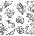 Seamless pattern sea shell coral crab and shrimp vector image
