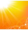 Sunburst vector image