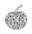 Pumpkin for Thanksgiving day Halloween vector image