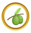 Olive branch with green olives icon vector image