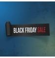 Black Friday Sale realistic Paper Ribbon vector image