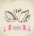 Swans wedding hand drawn vector image vector image