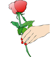 A Red Rose for you vector image vector image