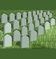 grave yard vector image
