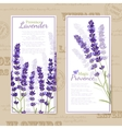 Lavender Flower Vertical Banners vector image
