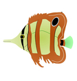 butterfly fish vector image vector image