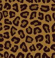 leopard pattern in brown vector image