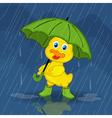 duckling hiding from rain under umbrella vector image vector image