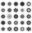 Flower symbol set vector image