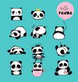 Cute panda hand drawn elements vector image