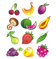Fruits collection vector image