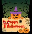 halloween background card with pumpkin vector image