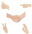 Human hands - sign language vector image