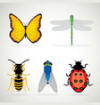 insects ladybug snail wasp cartoon vector image