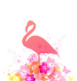 summer background with pink flamingo vector image