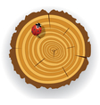 Wooden cut and ladybird vector image