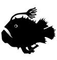 anglerfish vector image