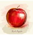 sketch of red apple in watercolor technique vector image