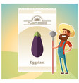 pack of eggplant seeds vector image