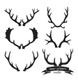 Hand drawn vintage antlers Rustic decorative vector image