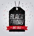 black friday big sale tag price shopping confetti vector image