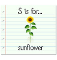 Flashcard letter S is for sunflower vector image