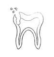 human tooth with decay vector image