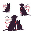 veterinary clinic logo template with cat and dog vector image