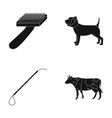 dog cow cattle pet vet clinic set collection vector image