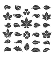 Tree leaves black silhouettes vector image