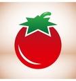 Tomato symbol vector image