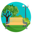 wooden bench in park with bushes trees and street vector image