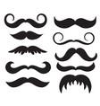 set of vintage mans mustache calligraphy vector image